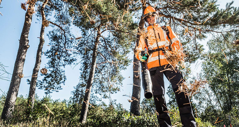 Medewerker groenvoorziening aan het werk voor Globen