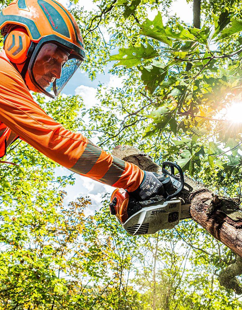 BBL boomverzorger aan het werk met motorkettingzaag: banen met opleiding
